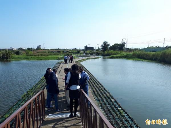 新竹市港北社區是竹市第一個農村再生社區,社區內的港北埤塘,是浮萍式的埤塘,已成為港北社區的特色。(記者洪美秀攝)