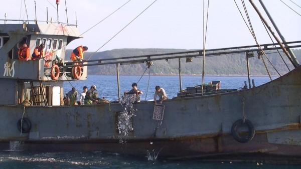 查扣中國漁船依照慣例,必須先海拋相關漁獲。(澎湖海巡隊提供)