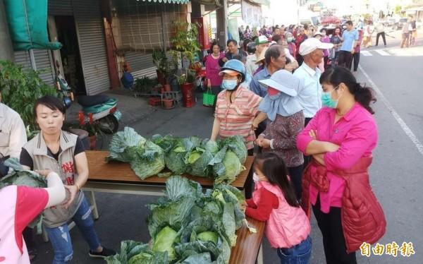 民眾呼朋引友,有的出動家人一起來排隊,領取免費的高麗菜。(記者楊金城攝)