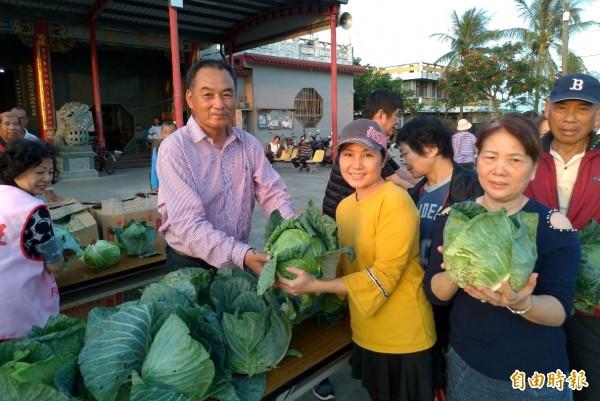 台南市議員謝財旺(前左二),今天起到12月8日一連5天在選區大北門地區下鄉免費發送高麗菜。(記者楊金城攝)