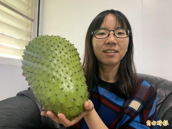 刺番荔枝比人臉大,也比嬰兒重。(記者張存薇攝)
