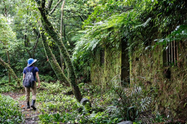 新北市觀光旅遊局推出淡蘭古道,讓登山者們體驗先民行走的道路。(新北市觀光旅遊局提供)