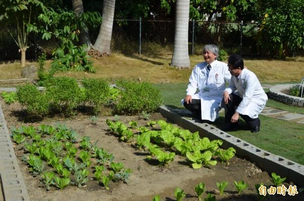 台大雲林分院闢建療癒花園,改善病友病情。(記者林國賢攝)