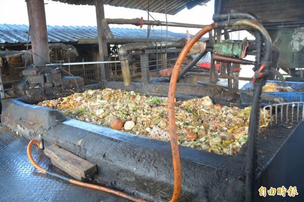 花蓮縣每月廚餘量約500公噸,若未來全數廚餘禁止餵豬,堆肥、掩埋處理仍可負荷。(記者王峻祺攝)