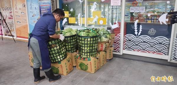 高麗菜價直直落,基隆區漁會有感農漁民都是辛苦賺錢,採購一千顆高麗菜,希望幫助菜農;基隆區漁會推出來買年貨就送高麗菜。(記者俞肇福攝)
