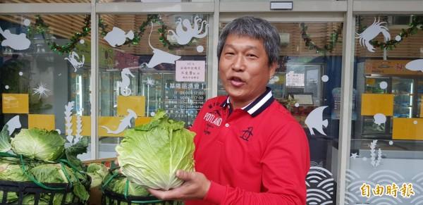 高麗菜價直直落,基隆區漁會有感農漁民都是辛苦賺錢,採購一千顆高麗菜,希望幫助菜農;基隆區漁會總幹事陳文欽說,來直銷中心買年貨,就送高麗菜。(記者俞肇福攝)