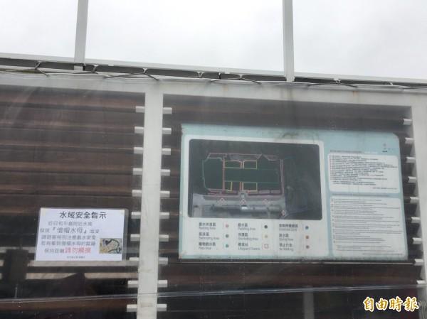 和平島公園已張貼公告提醒民眾注意僧帽水母。(記者盧賢秀攝)