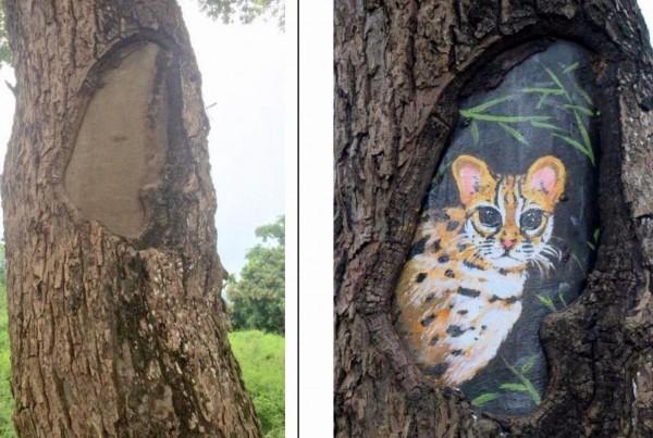 南投縣集集綠色隧道台灣形狀的樹洞,經彩繪石虎圖騰後,更增添生態保育意義。(記者謝介裕翻攝)