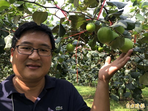 高樹鄉果樹產銷第24班班長潘志民種了2公頃的珍愛蜜棗。(記者羅欣貞攝)