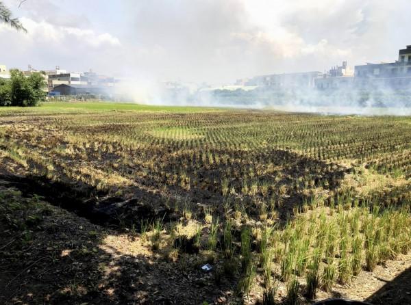 每逢稻作收割農地燒稻草情形即層出不窮。(記者湯世名翻攝)