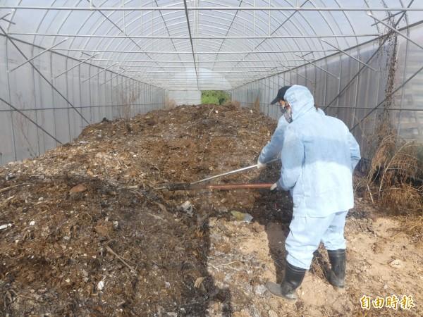 金門大洋堆肥場在向中央爭取經費補助辦理的廚餘場改善及擴建工程未完工前,先以傳統堆肥處理廚餘。(記者吳正庭攝)