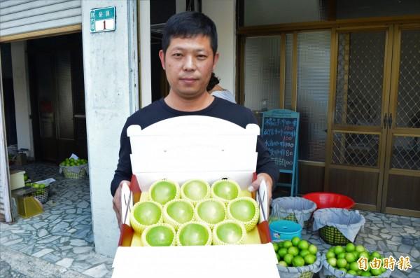 劉恩福種出優質雪蜜棗,搶攻年節伴手禮市場。(記者林國賢攝)