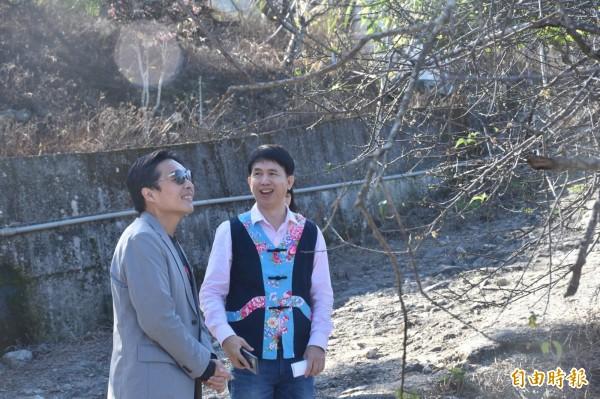 高市民政局長曹桓榮(左)和六龜區長楊孝治(右)前往梅園賞花。(記者黃佳琳攝)