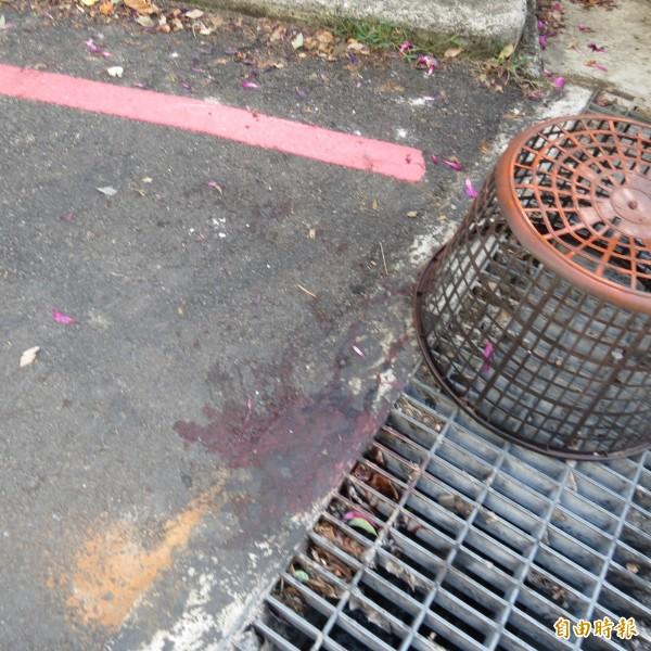 女童坐堆高機前的鐵叉處,不慎跌落遭輾壓,現場還有一些血跡。(記者蘇金鳳攝)