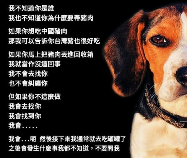 內政部護國神犬最初版本引起網路熱烈討論,吸引五萬多網友按讚。(記者陳鈺馥翻攝)