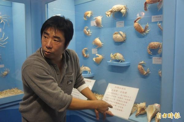 螃蟹館館長陳宏圖,將興趣化成工作,推廣甲殼類知識。(記者劉禹慶攝)
