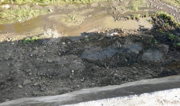 彰化縣府單位將疑似動物或禽類內臟就地掩埋,引發鄉民砲轟恐汙染農地,稍後又挖出另外處理。(記者湯世名翻攝)