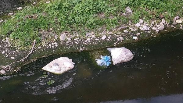 疑似動物或禽類內臟昨被民眾發現漂在溝渠內。(記者湯世名翻攝)