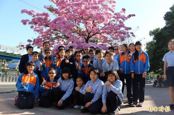 洋紅風鈴木爆開,學童樹下賞花,高興的心情全寫在臉上。(記者張聰秋攝)
