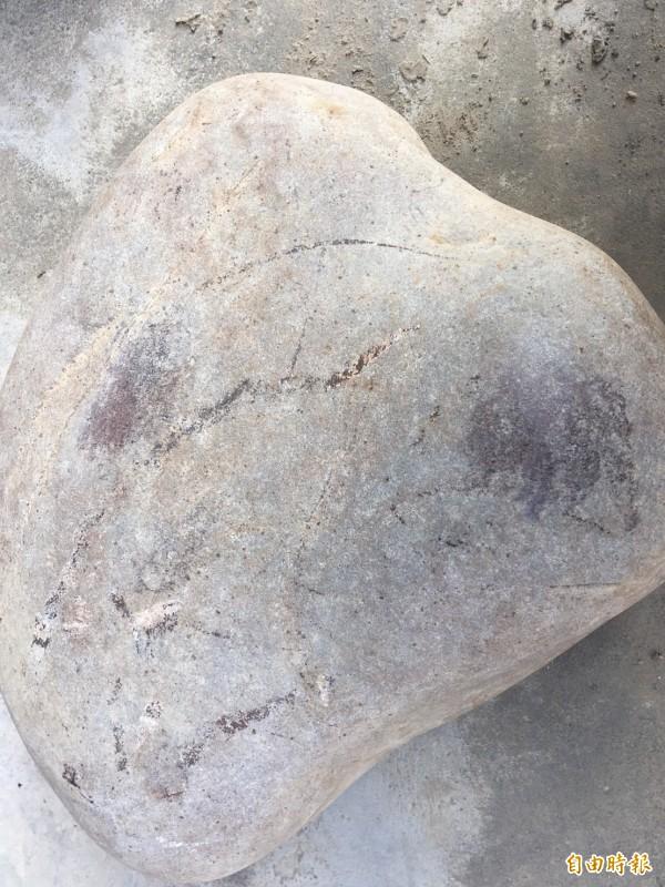 詹姓老農鑿井挖出的石頭,隱約可以看出內部為玫瑰色。(記者蔡宗勳攝)