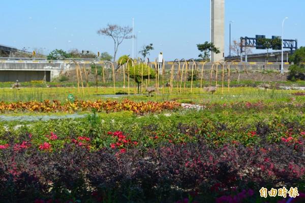 市府在霧峰福新路旁的丁台公園打造小花海,白鷺鷥造型的綠雕和盛開的花朵相當吸引人。(記者陳建志攝)