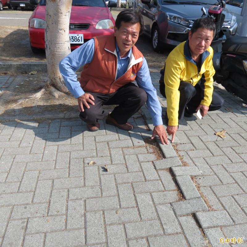 烏日廣停六停車場旁的人行道有多處隆起,很多住戶不小心絆倒受傷。(記者蘇金鳳攝)