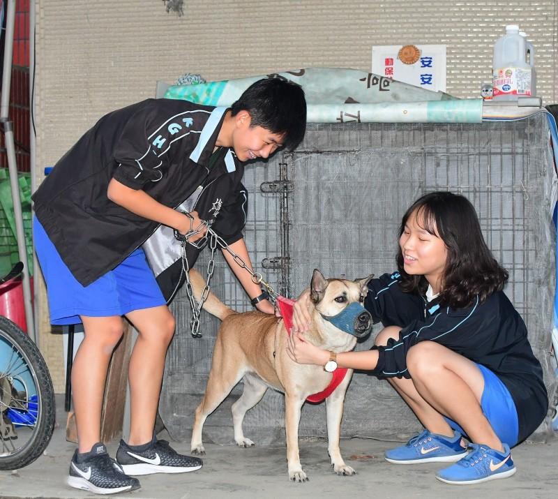 高雄女中同意將「安安」納編為校犬。(台灣動物緊急救援小組提供)