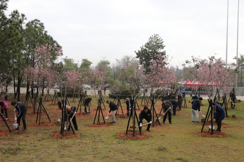國立金門大學舉辦愛戀櫻花園植樹活動,與會者在全島最大吉野櫻集中種植區,共同參與植樹培土。(金大提供)