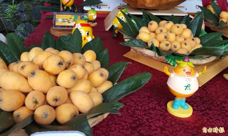 太平枇杷進入產季,太平農會和公所邀請大家一起來太平吃枇杷。(記者陳建志攝)