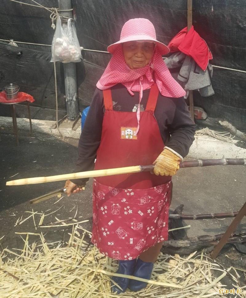 70歲泰籍台灣媳婦宋馬西諾在口湖埔北村路口賣甘蔗,一整天9小時只賺500元左右。(記者黃淑莉攝)