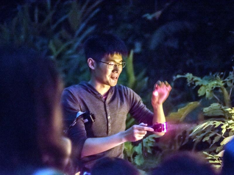 動物園推出6梯次「108戀戀火金姑」親子體驗營。(台北市立動物園提供)