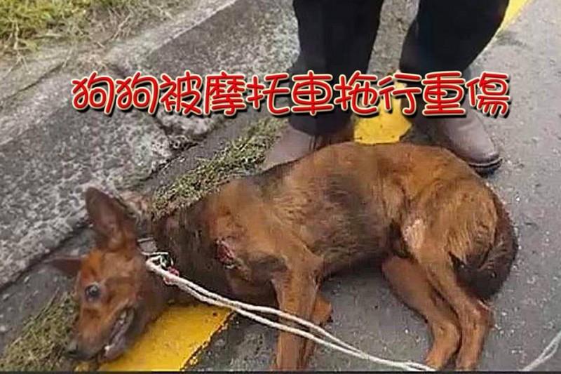 被拖行的小狗倒在地上奄奄一息。(圖擷取自宜蘭知識+)