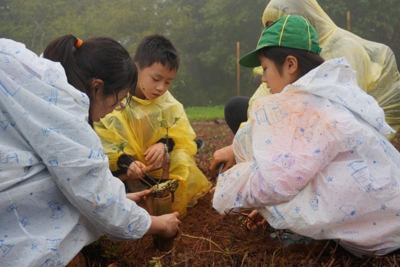 搶救大肚山原始林 親子雨中樂植樹