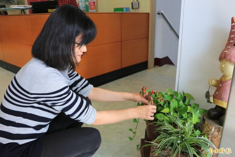 三灣圖書館館員將日常生活常見的廢棄材料重新利用,搭配簡單植栽就成為最吸睛的盆景藝術。(記者鄭名翔攝)