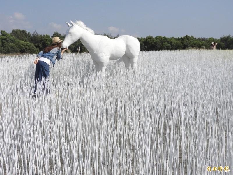 台南「漁光島藝術節」,環境裝置藝術夢幻,成為網美熱點。(記者洪瑞琴攝)