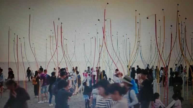 漁光島裝置藝術作品─「虹樹林」吸引大批民眾參觀,但也遭到嚴重破壞。(記者蔡文居翻攝)