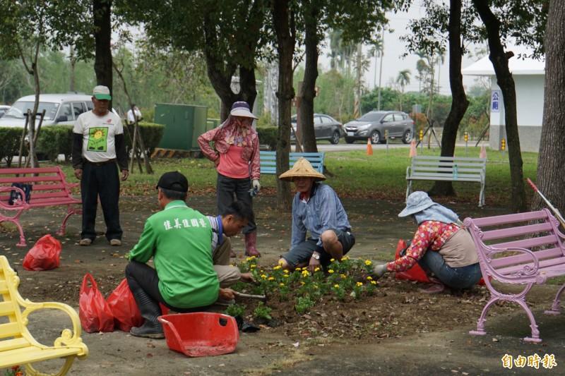 斗六市公所在公墓種植草花,希望改善公墓的氛圍。(記者詹士弘攝)