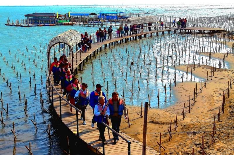 台南七股潟湖生態旅遊。(台灣高鐵提供)