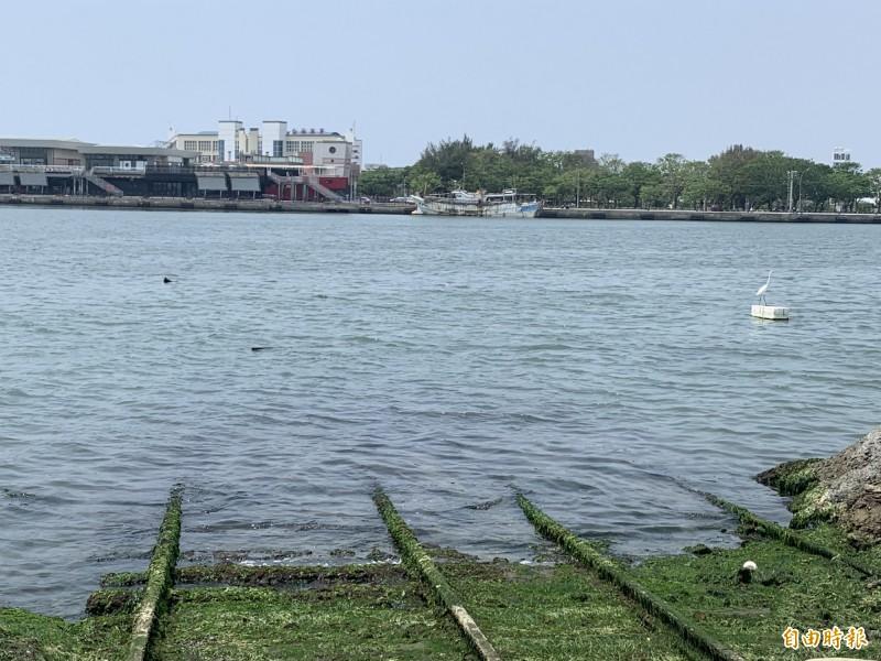 台灣船園區出現「神隱少女」動畫相似場景,成為打卡新熱點。(記者洪瑞琴攝)
