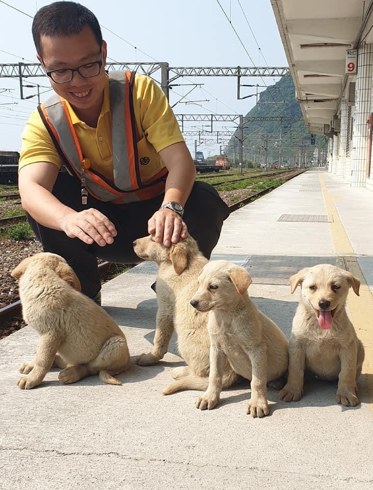花蓮和仁車站旁上月突然出現一群毛小孩,台鐵人員暫時化身奶爸照料,目前已送養6隻。(記者王峻祺翻攝)