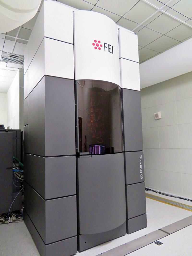 中研院與中央大學團隊,率全球之先以高解析度冷凍電顯微鏡研究「酶」。(中研院提供)