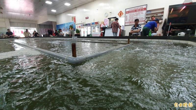 花蓮強震,彰化4級震度,縣內有釣蝦場的龍蝦池,池水被地震震得好比海上船隻左右搖晃劇烈。(記者張聰秋攝)
