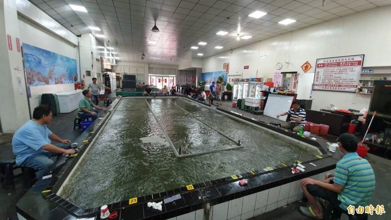 彰化縣1家釣蝦場地震發生時,釣蝦池池水搖晃劇烈。(記者張聰秋攝)