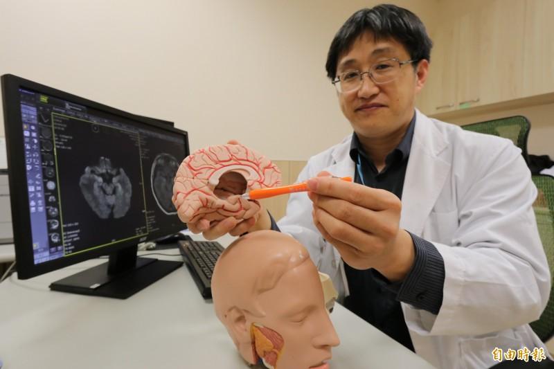 亞大醫院神經內科主任王馨範指出「抗NMDA受體腦炎」位置,提醒若延遲診斷與治療,可能導致嚴重神經後遺症,甚至死亡。(記者陳建志攝)