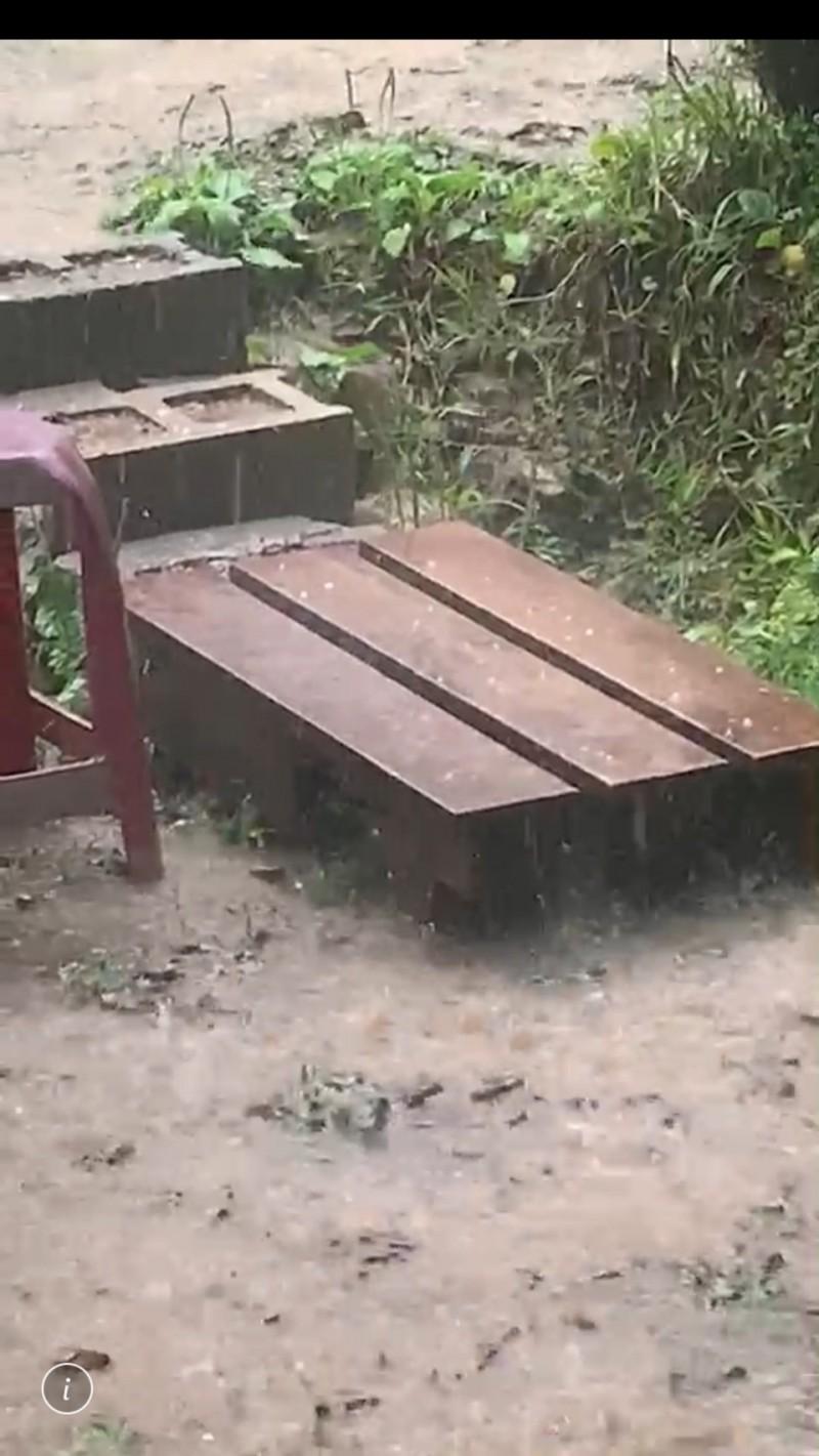 阿里山鄉來吉地區降下冰雹雨,木板上可以看見水冰珠。(石惠菱提供)