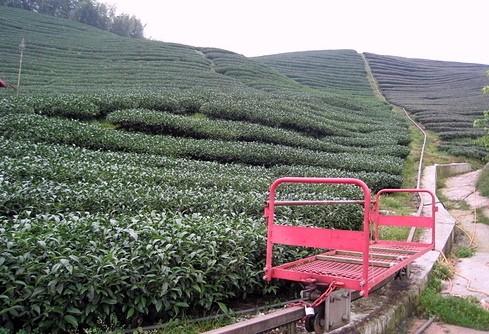 單軌車是南投縣竹山鎮「八卦茶園」一帶茶農克服陡峭環境製作的運送設施。(記者謝介裕翻攝)