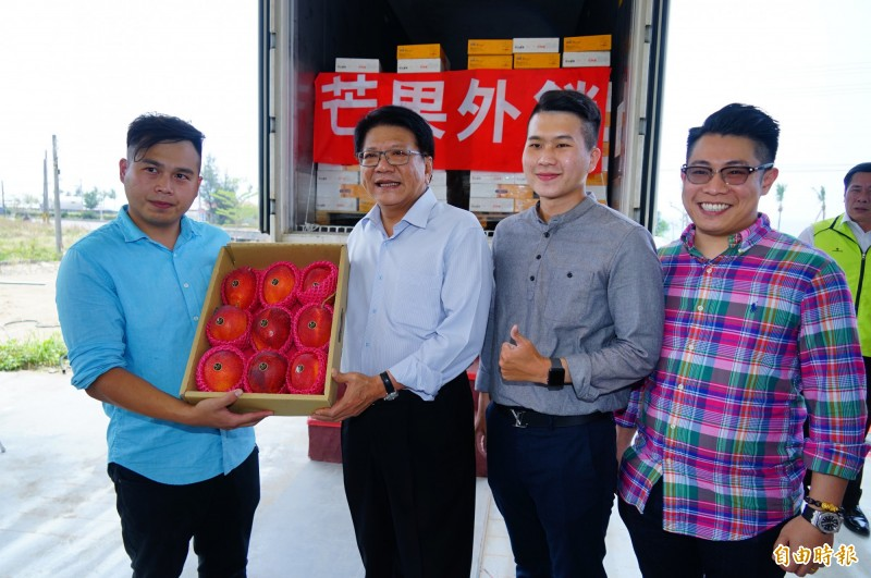 「盧家芒果」單一農戶外銷香港就可上看50噸。(記者陳彥廷攝)