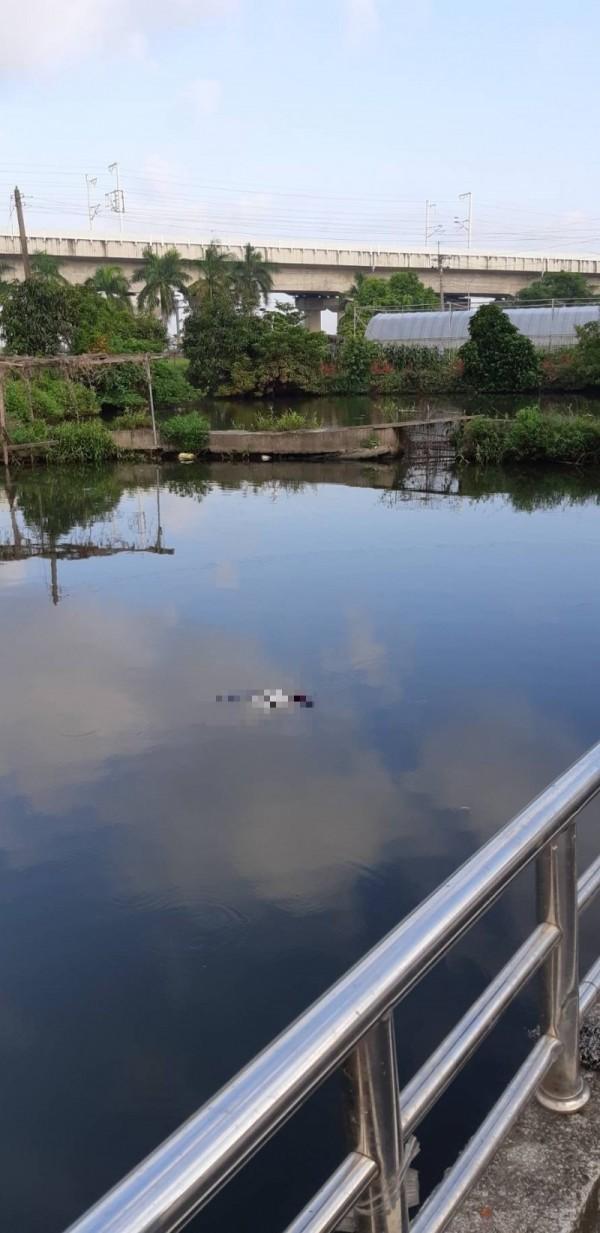 嘉義縣太保市後庒里一處魚池發現浮屍。(記者蔡宗勳翻攝)
