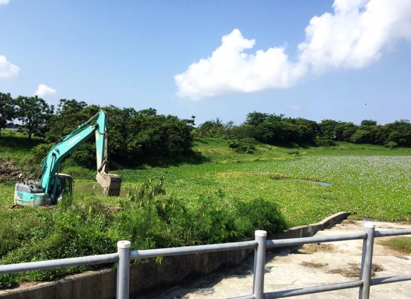 市政府水利局已調派怪手進駐,展開布袋蓮的挖除作業。(記者吳俊鋒翻攝)