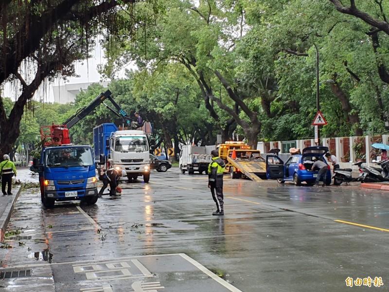 北市南昌路路樹倒塌,警方獲報後封路交管,狀況於下午1點50分排除。(記者林家宇攝)